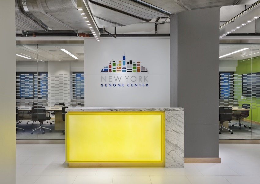 new york genome center - Nancy J Kelley Associates institutions